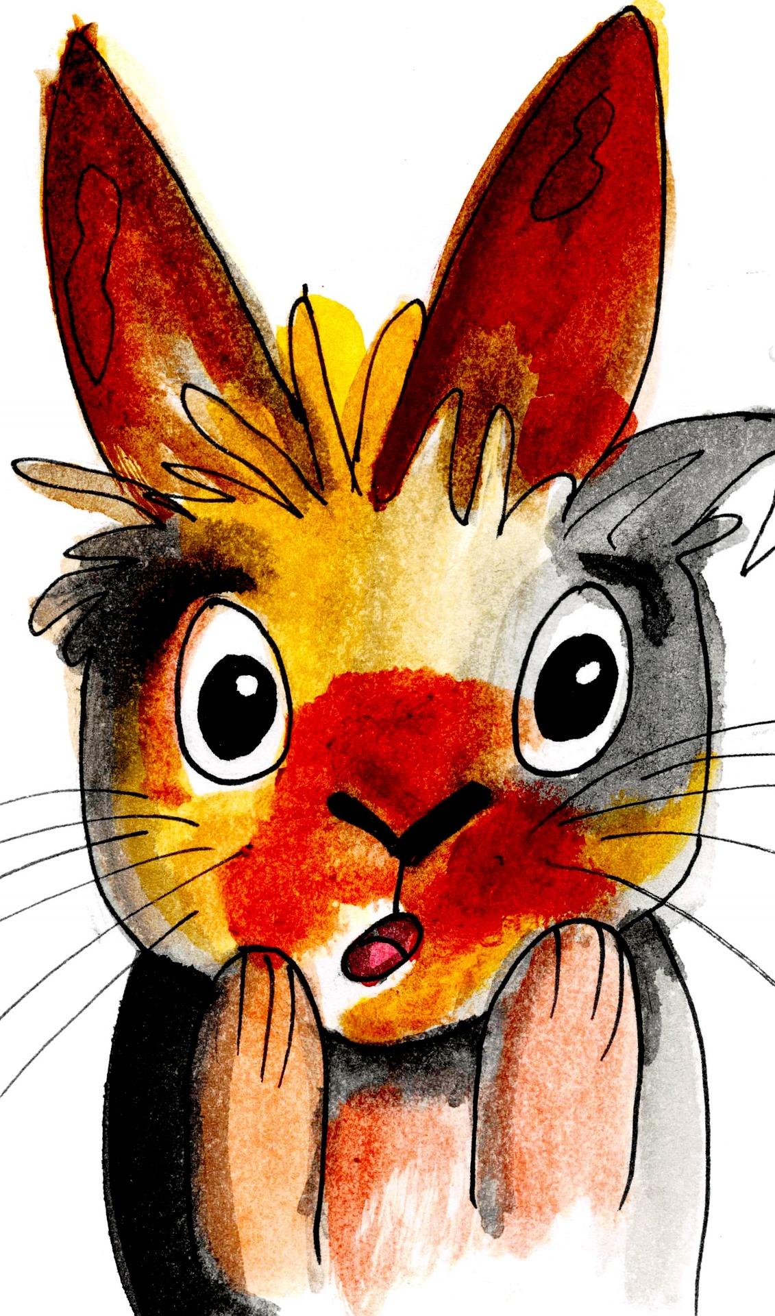 rabbit-1991301_1920.jpeg