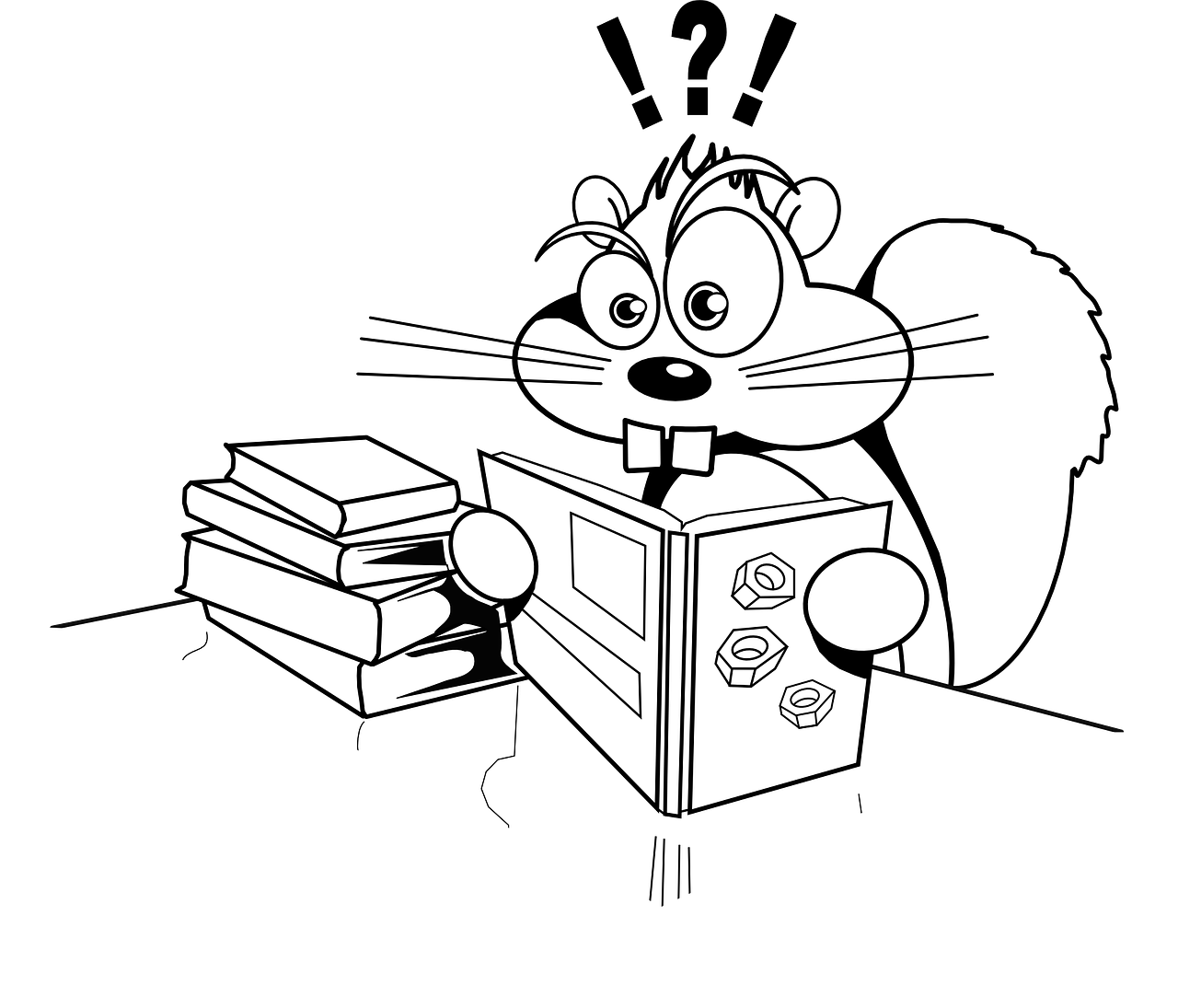confused-squirrel.png
