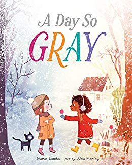 image of A Day So Gray book cover