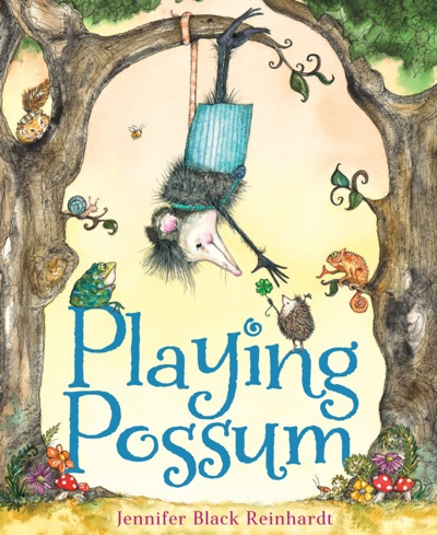 cover of Playing Possum
